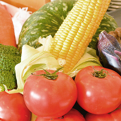 地元産の旬野菜